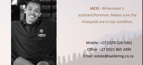 JACO. Winemakers Righthand. Makes sure that the vineyards are in top condition