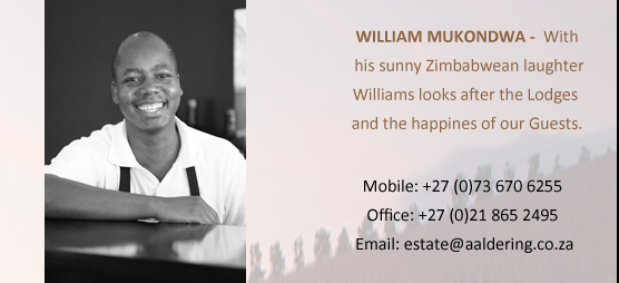 WILLIAM MUKONDWA – With his sunny Zimbabwean laughter William looks after the lodges and Happiness of our Guests